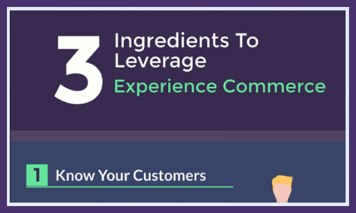 Leveraging Experience Commerce